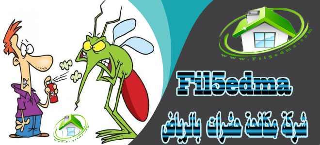 شركة رش بق الفراش بالرياض Company spray bed bugs in Riyadh