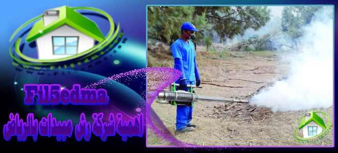 اهمية شركة رش مبيدات بالرياض Spraying of pesticides in Riyadh