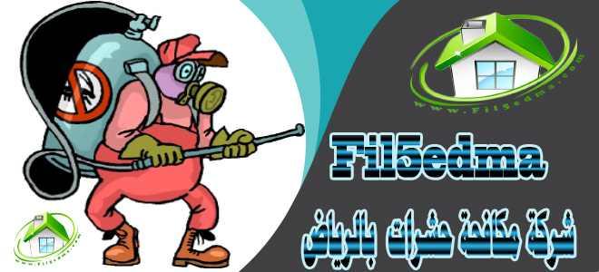 شركة مكافحة حشرات بالرياض / An insect control company in Riyadh