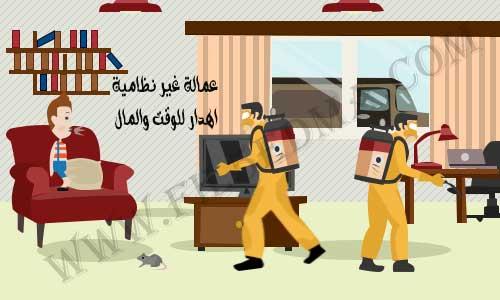شركة مكافحة حشرات بالرياض رخيصة insect control company in Riyadh