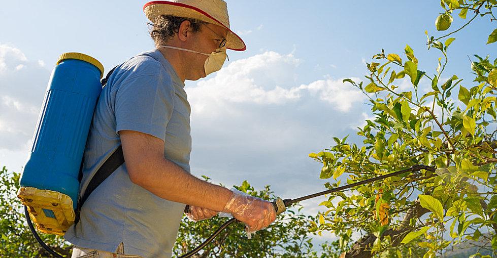 خطوات مهمة قبل رش المبيدات